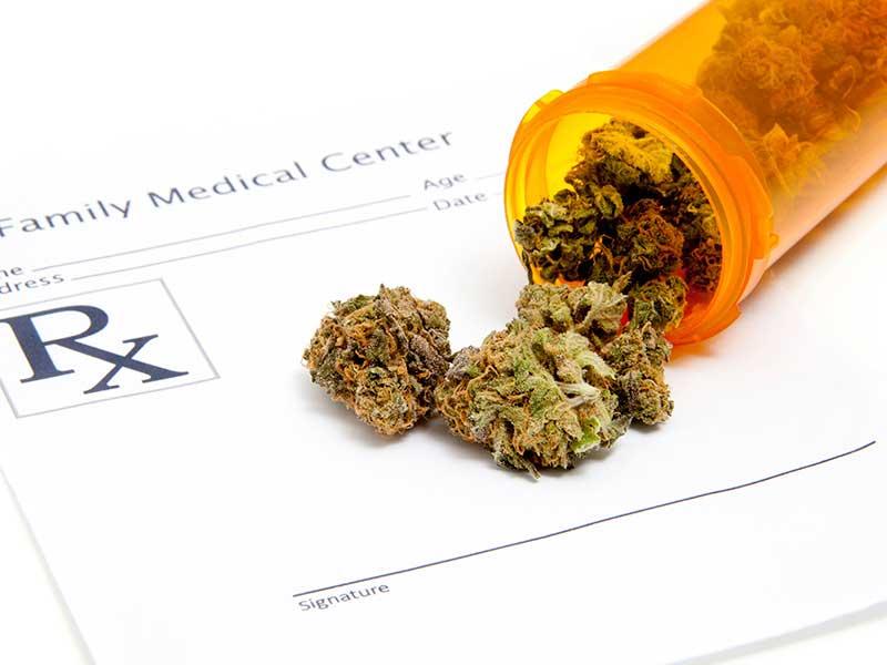 Uso medico della Cannabis, una questione ancora da valutare