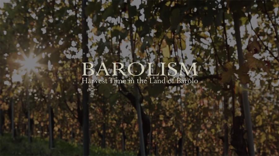 Barolism. Un video sulla vendemmia nella terra del Barolo