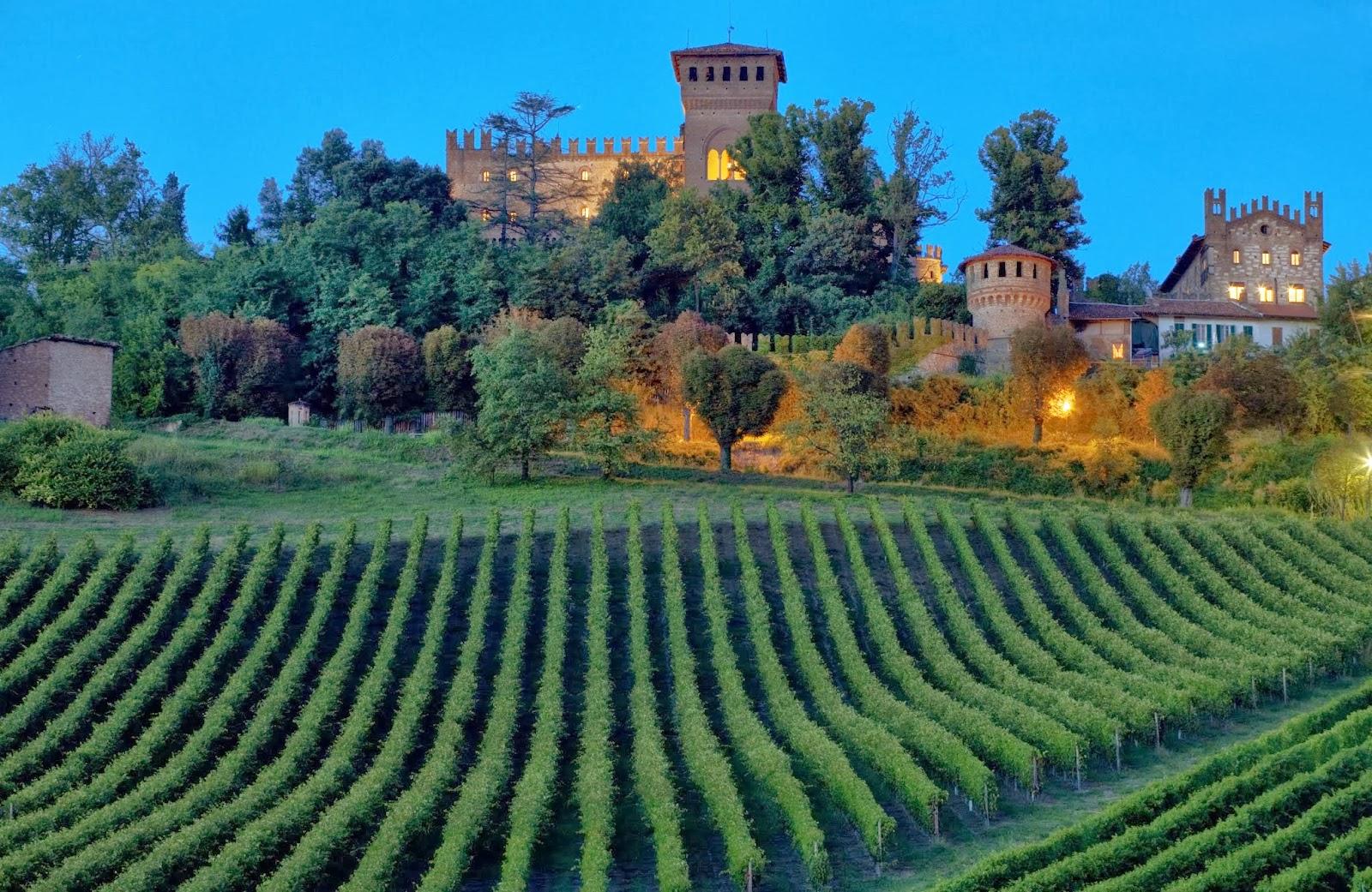Il Monferrato...la terra nata per il vino.