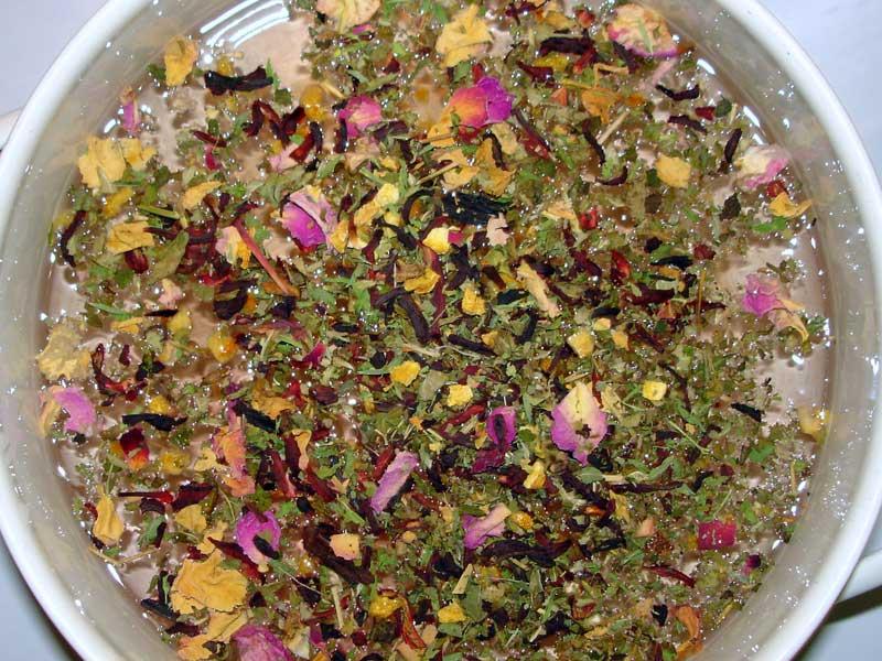 Le tisane: una sana e gustosa abitudine quotidiana