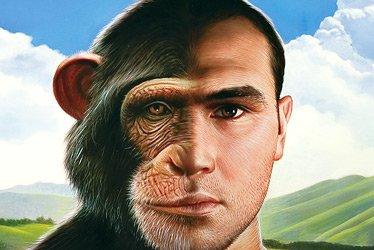 Sapiens: Speciazione per Traslocazione Robertsoniana?