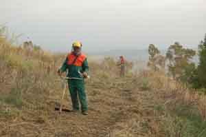 Forestali: sindacati, Regione anticiperà somme