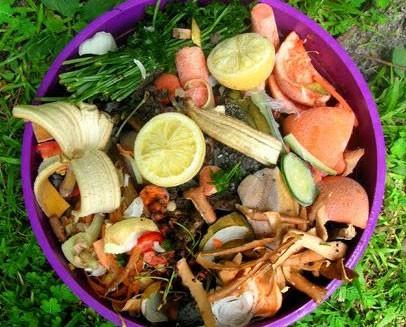 Evitare sprechi di cibo, gli scienziati ci dicono come