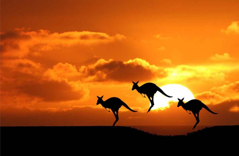 Vacanze in Australia, informazioni utili