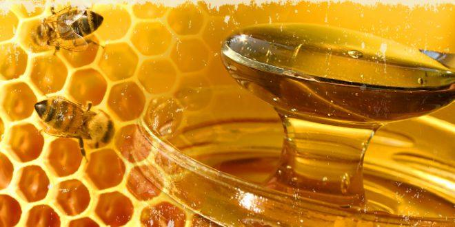 Il miele, l'oro dolce