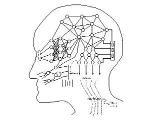Terapia genica contro il cancro al cervello