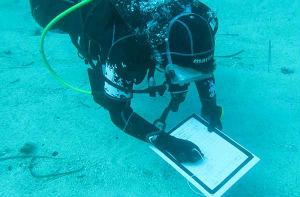 Campo scuola archeologia subacquea a San Vito lo Capo