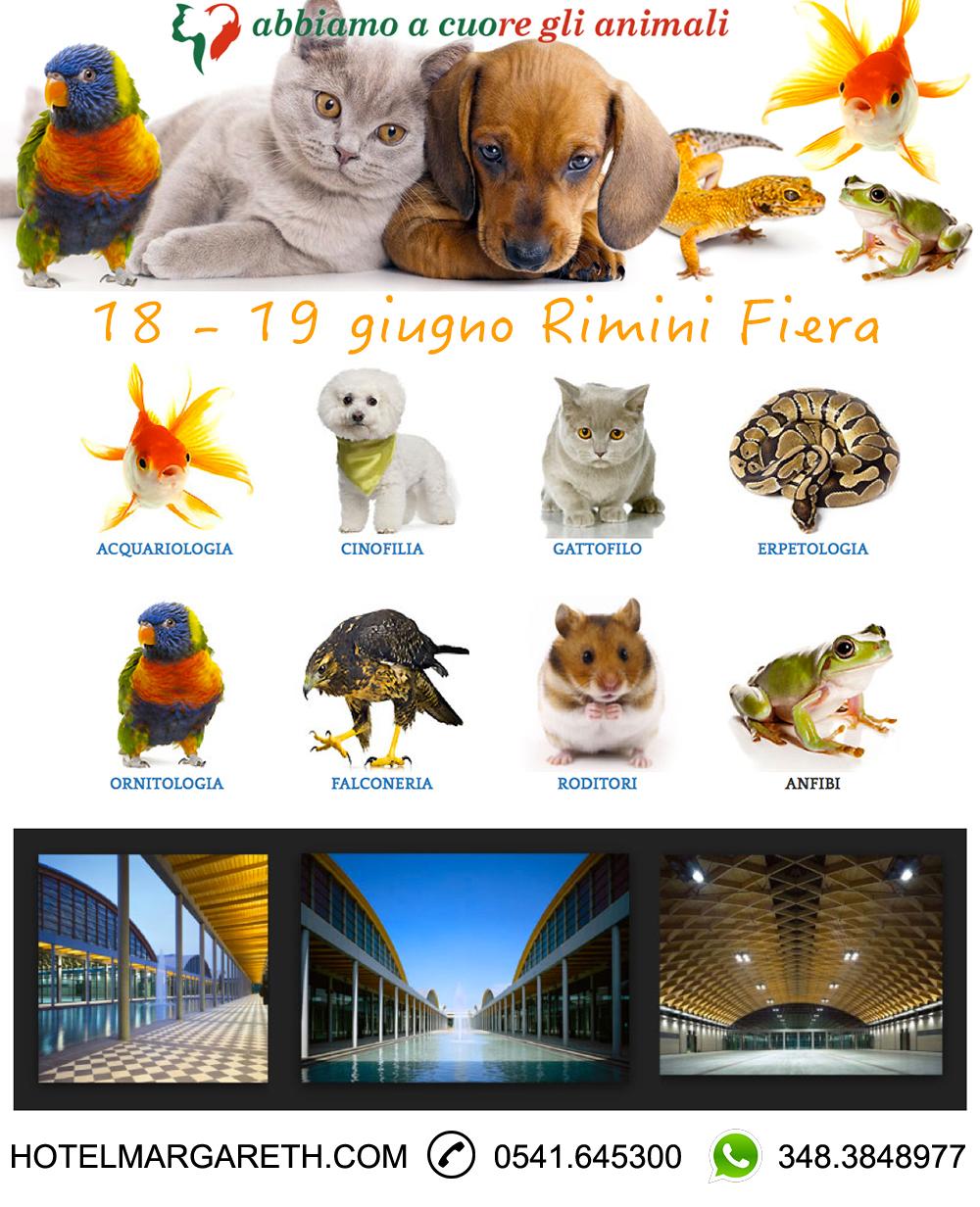 PetsItaly Rimini 2016