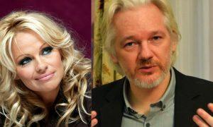 Pamela Anderson racconta la verità sulla storia d'amore con Julien Assange