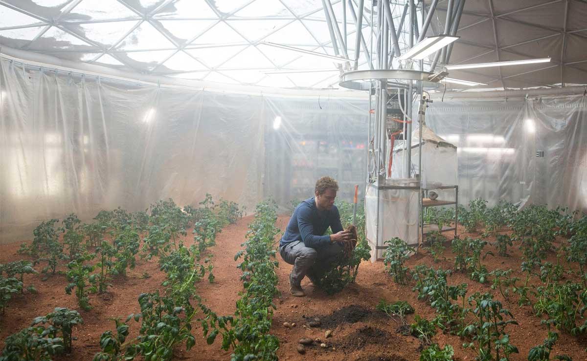Patate su Marte, altro che The Martian