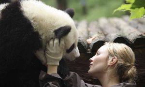 Al cinema dal 14 luglio: Sneezing Baby Panda, da Youtube alle sale cinematografiche [VIDEO]