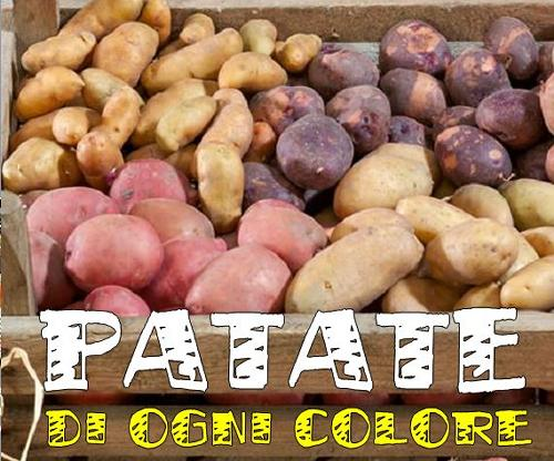Raccolti allegri con le patate colorate
