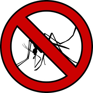 Soluzioni e Rimedi per Eliminare le Zanzare